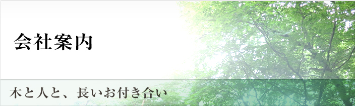 main_title_company